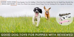 Good Dog Toys For Puppies with Reviewed