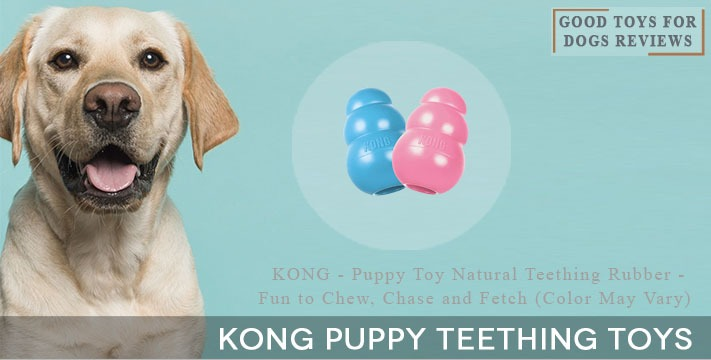 Kong Puppy Teething Toys