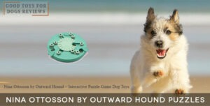 Nina Ottosson by Outward Hound Interactive Puzzle Dog Toys