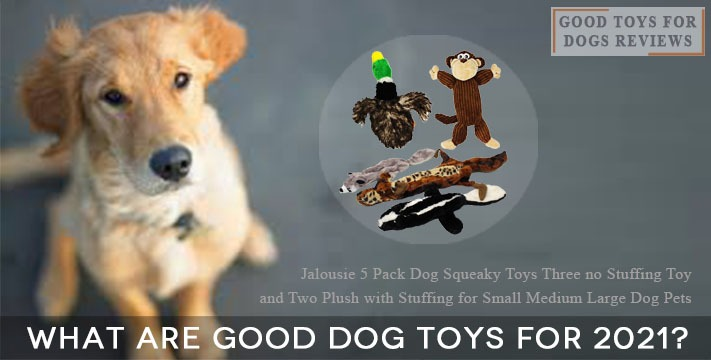 What are Good Dog Toys for 2021